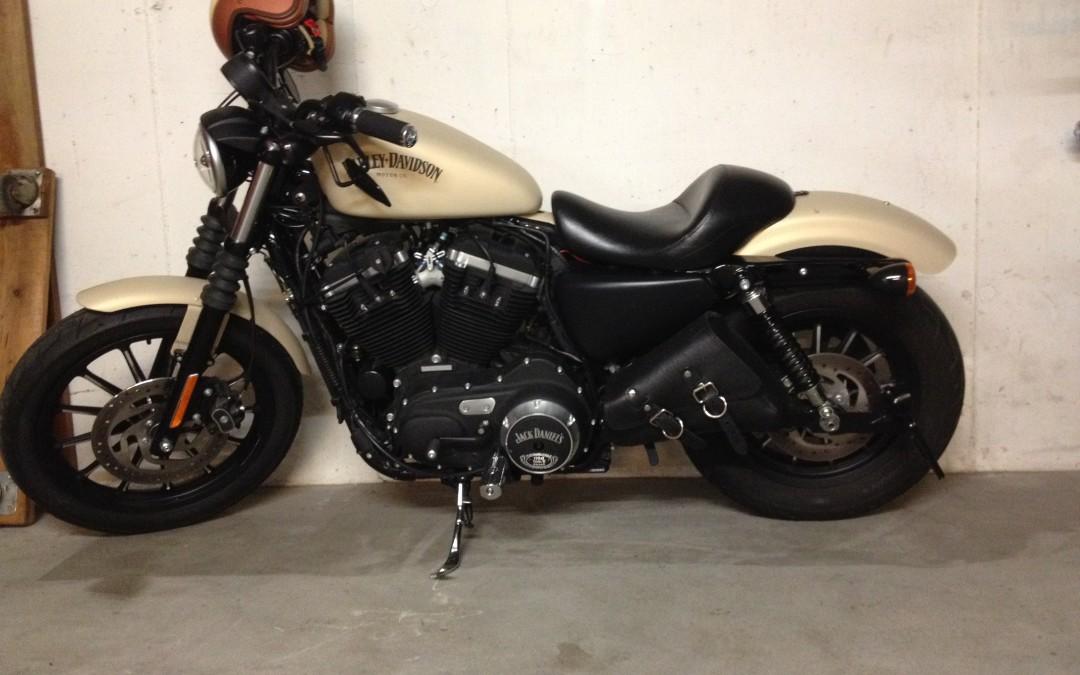 883 ™ Powerbike