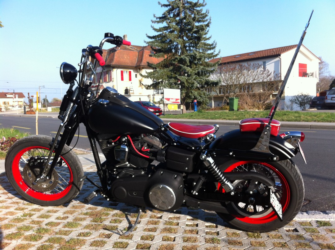 Dyna Rocker Bike